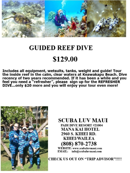 Guided Maui Reef Dive